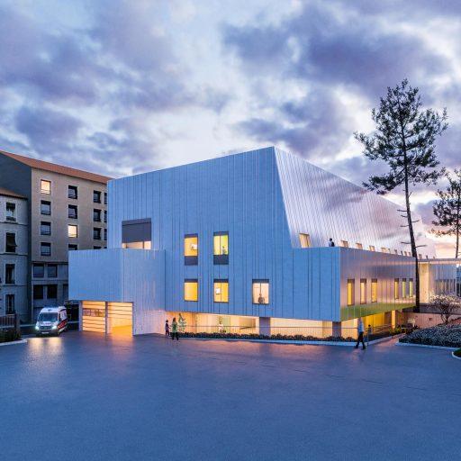Concours_architecture_3D_perspective_Hospice_civil_lyon_2